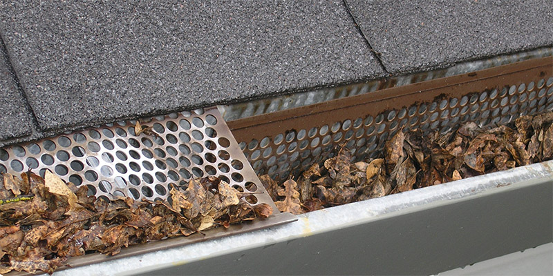 Picture of leaves build up in gutter